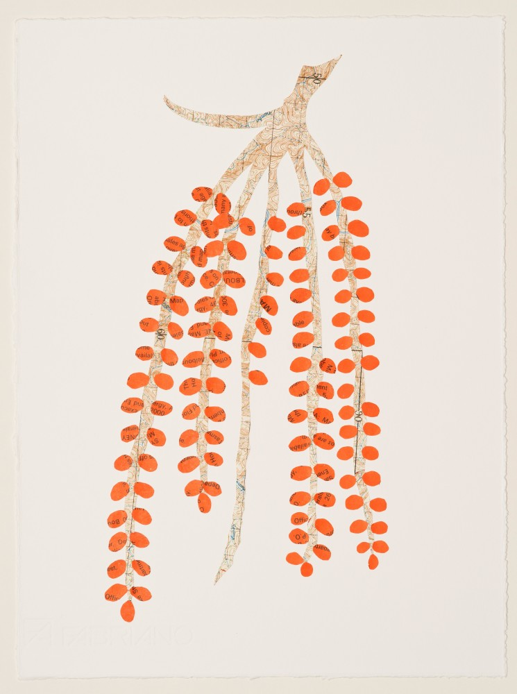 Untitled (red palm seeds) by Carole Wilson